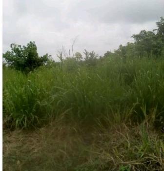 Plots of Land, Sogunje Alapako Isale, Ifo, Ogun, Mixed-use Land for Sale