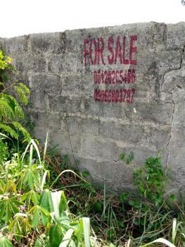 2 Plots of Land Fenced Round Without Gate, Shojolu Road Abalabi Paapaa Bustop Ilaro Raod, Ewekoro, Ogun, Mixed-use Land for Sale