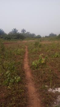 2 Plots of Dry Accessible Land with Survey Plan, Eruku Town, Ilogbo Eremi, Badagry, Lagos, Mixed-use Land for Sale