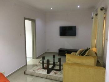Fully Furnished Room and Parlour Mini Flat, Parkview Estate, Ikoyi, Lagos, Mini Flat Short Let