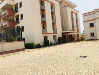 an Excellently Finished 10 Units of 3 Bedroom Flat with Bq, Swimming Pool., Asokoro, Asokoro District, Abuja, Flat / Apartment for Rent
