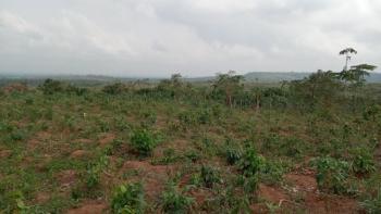 Plot of Land, Shimawa, Simawa, Ogun, Mixed-use Land for Sale