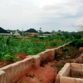 100ft By 100ft, Ufunmwengbe Via Ugbor/airport Road Gra, Benin, Oredo, Edo, Mixed-use Land for Sale