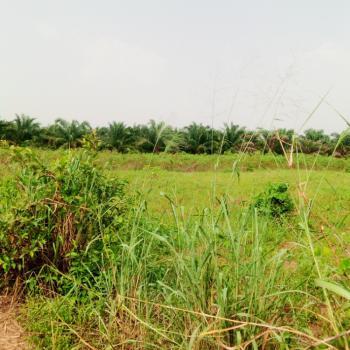35 Plots of Land (9 Acres), Along Benin Asaba Express Road Benin City, Uhunmwonde, Edo, Mixed-use Land for Sale