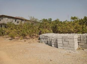 Bare Land, Plot No. 730, Dape, Abuja, Mixed-use Land for Sale