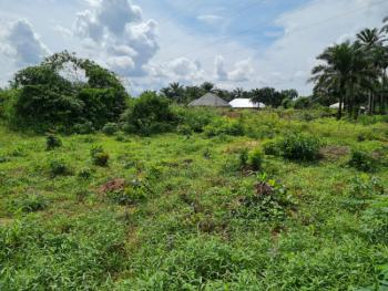 Beautiful Land Available in Good Location, Uyo, Akwa Ibom, Mixed-use Land for Sale