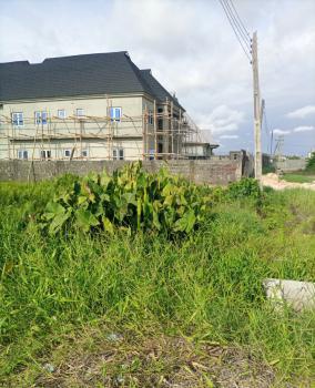 Nice and Standard Corner Piece Land, Serene and Secure Casia Estate Abijo Gra Area, Sangotedo, Ajah, Lagos, Mixed-use Land for Sale