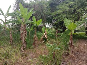 4 Acres of Land, Opp. Christopher University, Mowe, Off Lagos-ibadan Expressway., Mowe Ofada, Ogun, Land for Sale