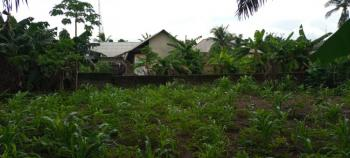 Big and Affordable Plot of Land, Off Ebiye Haven Street, Uyo, Akwa Ibom, Land for Sale