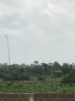 Farm Land, Onigari, Abule Ola, Odeda, Ogun, Commercial Land for Sale