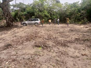 Get Your Acre of Solid Dry Land. 100% Genuine Investment. Start a Farm, 20 Minutes Drive Off Eleranigbe Junction. Rapidly Developing Area, Ibeju Lekki, Lagos, Mixed-use Land for Sale