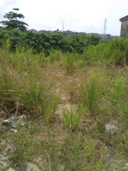 Ready to Build 1000sqm Fenced & Gated Land (mixed Use Land), Ikate Elegushi, Lekki, Lagos, Mixed-use Land for Sale