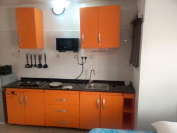 Luxury Self-contained, 2nd Avenue, Gwarinpa, Abuja, Semi-detached Duplex Short Let