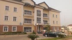 Luxury 2 Bedroom Flat, Wuse 2, Abuja, Flat for Rent