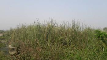 150 Acres of Hot Distress Land., Beside Free Trade Zone, Ibeju Lekki, Lagos, Industrial Land for Sale