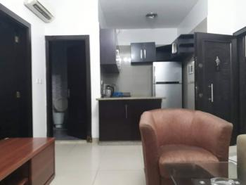 Lovely Built, Furnished and Fully Serviced Mini Flat in a Nice Neighbo, Ikate, Lekki, Lagos, Mini Flat for Rent