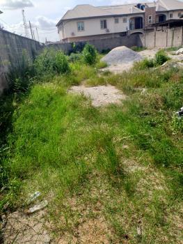 Half Plot of Dry Land Measuring Approximately 320sqm, Medina Estate, Medina, Gbagada, Lagos, Mixed-use Land for Sale