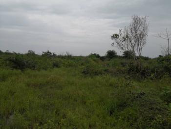 8000sqm Land, Bogije, Ibeju Lekki, Lagos, Land for Sale