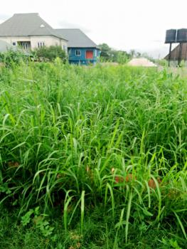 Plot of Land 50 By 100, Americana Road, Asaba, Delta, Residential Land for Sale