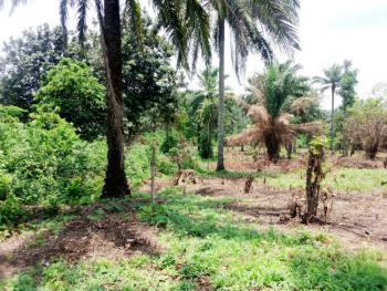 Genuine 10 Acres of Farm Land, Iware Village, Ibadan, Oyo, Mixed-use Land for Sale