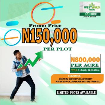 Invest in Plantain Farm, Remo North, Ogun, Commercial Land for Sale