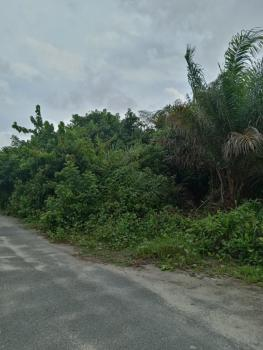 Perfect Dry Land Measuring 1114sqms, Government Reserved Area, Abijo, Lekki, Lagos, Mixed-use Land for Sale