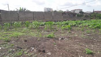 2 Plots of Land, Peace Estate, Onigbongbo, Maryland, Lagos, Residential Land for Sale