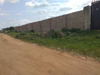 Two Plots of Land Fenced and Gated. Land Has C of O., Ikeshi, Ado-odo/ota, Ogun, Mixed-use Land for Sale