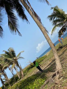 Beautiful Beachfront Property, Beautiful Ocean View, Eleko, Ibeju Lekki, Lagos, Commercial Land for Sale