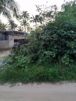 Strategically Located Undeveloped Dry Land in a Built Up Area, Abak Road, By School of Nursing, Ikot Ekpene, Akwa Ibom, Mixed-use Land for Sale