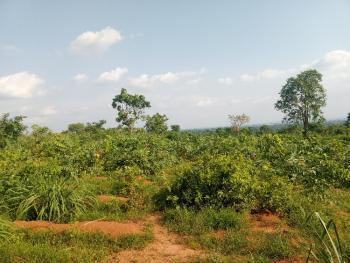 100 Plots of Land, Awka, Anambra, Mixed-use Land for Sale