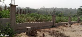 Affordable Dry Plots of Land in a Serene Location, Anwai Road, Asaba, Delta, Residential Land for Sale