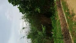 669.78sqms Land, Agric, Ikorodu, Lagos, Land for Sale