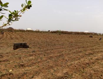 a Well Laid 700sqm Plot of Land, Kutunku, Gwagwalada, Abuja, Residential Land for Sale