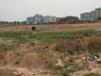 1.1 Hectare Along The Road, Before Code of Conduct Tribunal, Jabi, Abuja, Land for Sale