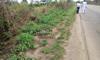 267 Acres of Industrial /commercial Land, Shagamu-ore-benin Expressway, Odogbolu, Odogbolu, Ogun, Mixed-use Land for Sale