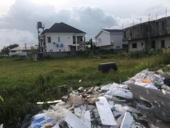 Amazing Land Deal, Just Out, Megamound Avenue, Ikota, Lekki, Lagos, Residential Land Joint Venture