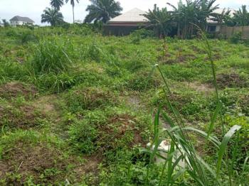 5 Plots of Land in a Serene Neighborhood, Rumuapu, Rukpokwu, Port Harcourt, Rivers, Commercial Land for Sale