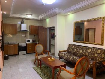 Radiating 1 Bedroom Apartment, Asokoro District, Abuja, Flat / Apartment Short Let