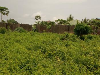 a Plot of Land with 2 Units of Uncompleted 2 Bedroom Flat, Abule Eko, Ijede Area, Ikorodu, Lagos, Detached Bungalow for Sale