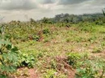 Farm Land, Simawa, Before Redemption Camp Off Lagos Ibadan Express Way, Simawa, Ogun, Commercial Land for Sale