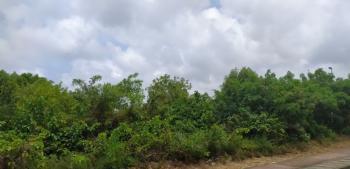 1424sqm Prime Land, Alpha Beach Road, Opposite Chevron, Lekki Phase 1, Lekki, Lagos, Residential Land for Sale