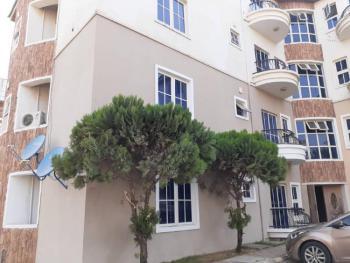 Iconic & Lavishly Designed 3 Bedrooms Apartment with Boys Quarter, Off Abdulsalami Abubakar Way, Near Apo Legislative Quarters, Garki, Abuja, Flat for Sale