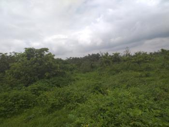 Massive Acares of Land, Lagos Ibadan Expressway, Km 46, Ogun, Mixed-use Land for Sale
