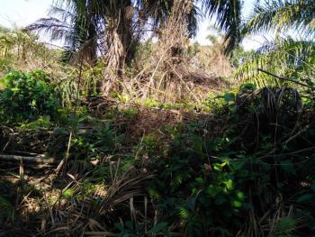 Massive Land, Opposite Rain Oil Abijo G. R. a, Sangotedo, Ajah, Lagos, Mixed-use Land for Sale
