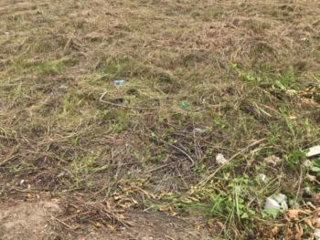 Land Measuring at 800 Sqm, Pinnock Beach Estate, Osapa, Lekki, Lagos, Land for Sale