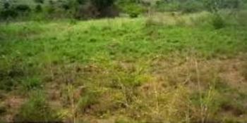 500sqms Plot of Land, Banana Island, Ikoyi, Lagos, Land for Sale