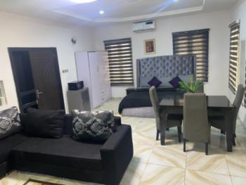 Studio Room, Chevron Alternative Route, Lekki, Lagos, Self Contained (single Rooms) Short Let