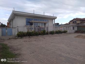 Office Building, Ago Palace Way, Amuwo Odofin, Lagos, Office Space for Rent
