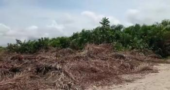 Land with Government Approved Excision, Behind Beachwood Park Estate, Ibeju, Lagos, Mixed-use Land for Sale